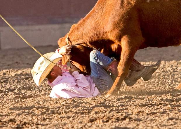This cowboy is doing his best to hold on to this cow until reinforcements can arrive during the wild-cow milking event at the Ride for the Brand Ranch Rodeo in Colorado Springs.