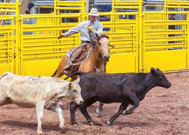 Jake Gillmore of Nix Cattle Company sorts cattle in a numbered sequence at the Ride for the Brand Ranch Rodeo in Colorado Springs.