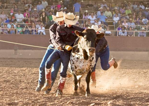 Anything can happen during wild-cow milking event at the Ride for the Brand Ranch Rodeo in Colorado Springs. This event is a real crowd-pleaser.