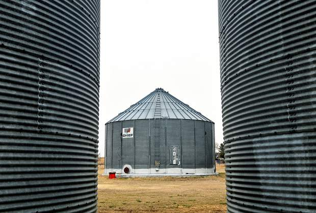 The walls of two grain silos frame a third silo that will hold the organic grains for S T Organics in Hereford.