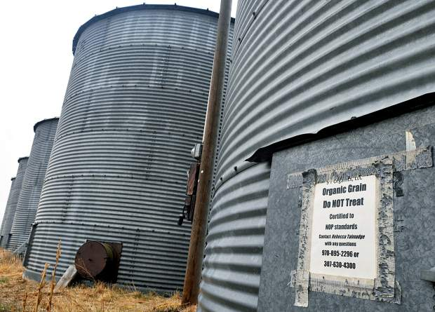 A sign marks one of the silos in a row as for organic use only. The silos are a part of S T Organics operation in Hereford.