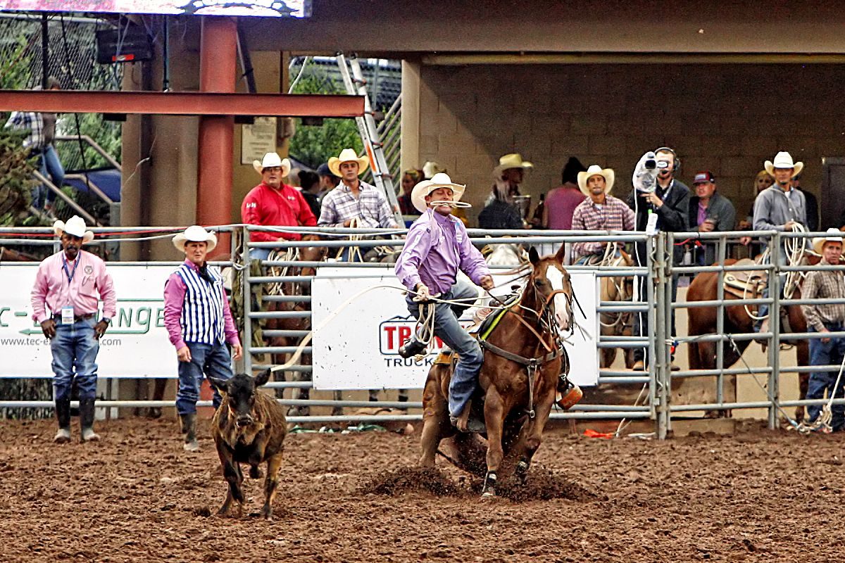Well-known Texas cowboy, Clint Cooper, got off his horse in quick fashion to stop the clock at 9.23 seconds during the July 13 Tie Down Roping event. The effort allowed Cooper to advance to the championship round and a chance to earn $15,000 at the 2017 Pikes Peak or Bust Rodeo in Colorado Springs, Colo.