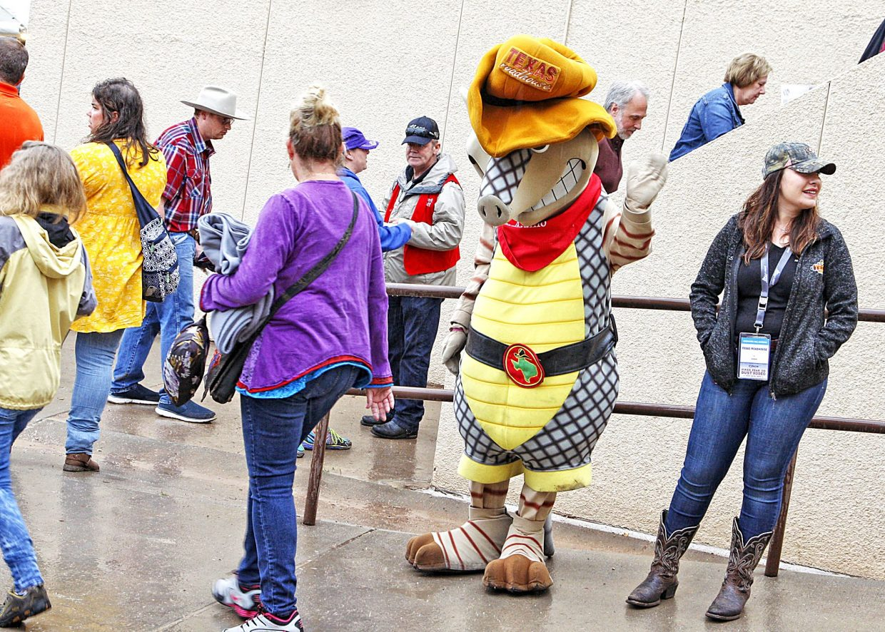 The Texas Roadhouse restaurant's armadillo mascot was on hand in the rain to help entertain rodeo fans before the start of action on July 13.