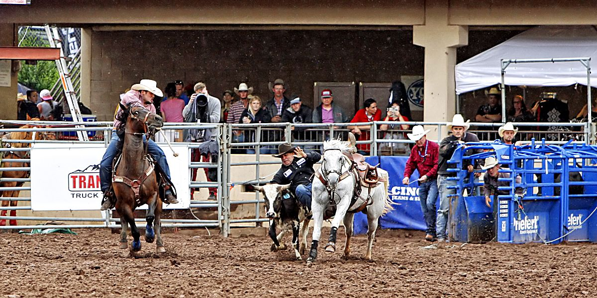 Texas steer wrestler CJ Aragon nailed down the third best time of the entire rodeo (4.31-seconds) on July 13 to advance to the championship round and a chance at earning a $15,000 first place check. Aragon ended up placing fifth in the 77th annual Pikes Peak or Bust Rodeo.