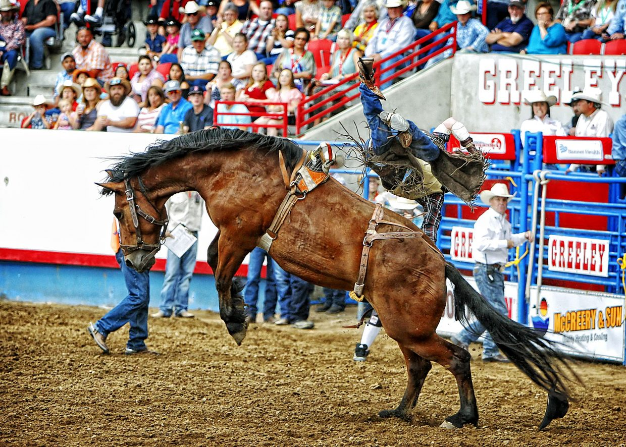 Beutler and Son Rodeo Company has a reputation for bringing big, strong bucking horses to a rodeo, which a number of cowboys found out the hard way during the championship round of the 2017 Greeley Stampede on July 3.