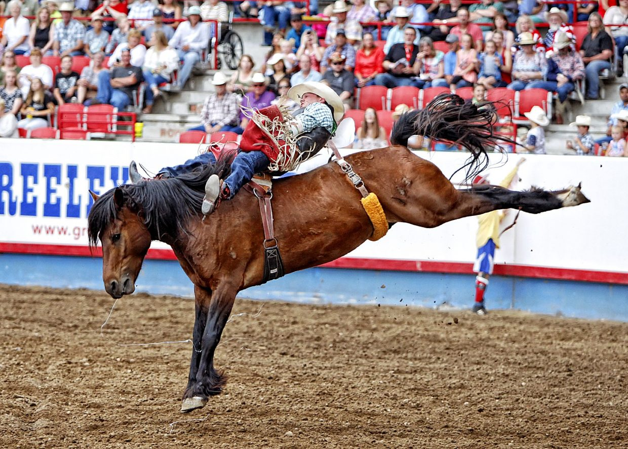 Bareback rider Shane O'Connell of South Dakota tied an arena record with this 89-point ride aboard a big, strong bucker named Hollywood Hills during the championship round of rodeo action at the 2017 Greeley Stampede.