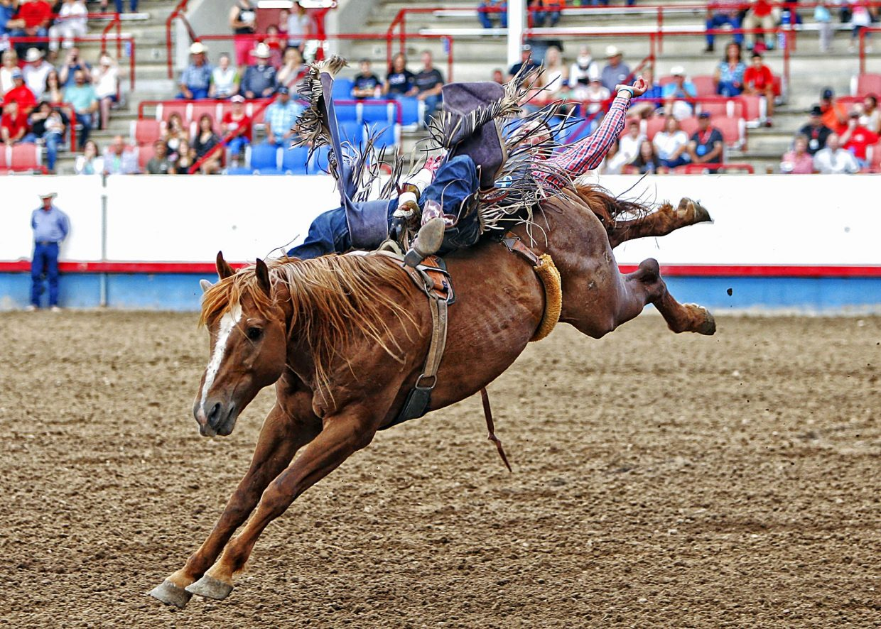 Home state cowboy Tyler Scales of Severance, Colo., got the Greeley crowd warmed up with his successful ride aboard South Suds at the beginning of action in the 2017 Greeley Stampede championship round of rodeo on July 3.