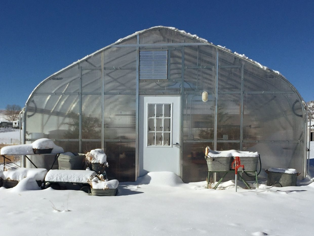 "The Perry's greenhouse, which they built in 2015, allows Trudy Perry to blissfully ""play in the dirt"" year-round. Photo compliments of Heritage Lavender"