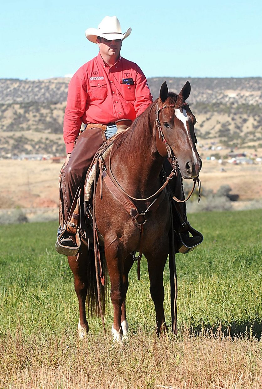 WYO Ranch Quarter Horse Sale one of the nation's top production sales