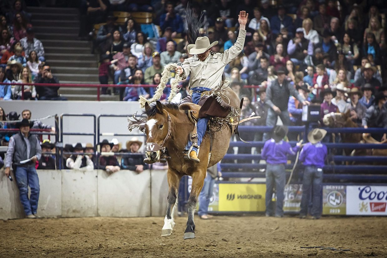 2019 National Western Stock Show Celebrates Over 700 000