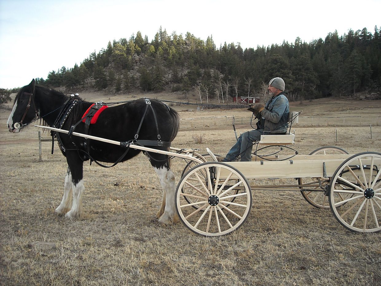 Gordon Chavis has had his Clydesdale mare, Ellie, ever since she was a weanling. After training her to drive, he's hoping to also get her going under saddle after a ligament injury temporarilly curtailed that schooling about a year ago.